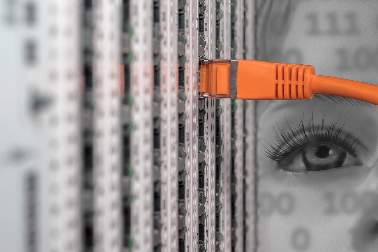 Rynek usług IT. akie specjalności są poszukiwane?