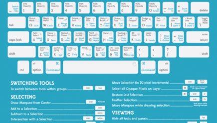 Infografiki dla grafików