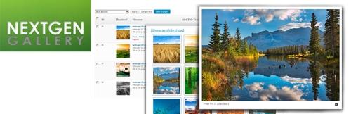 Jak stworzyć galerię na WordPress