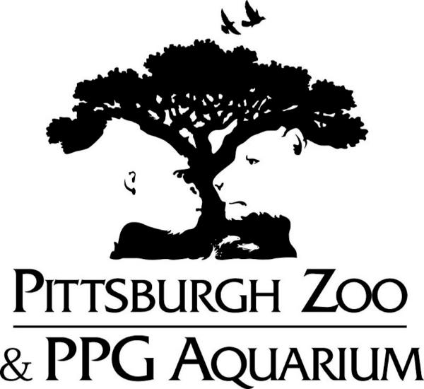 Logo - kreatywne projekty graficzne