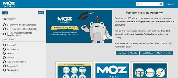 Darmowe kursy online z certyfikatem dla freelancerów - SEO